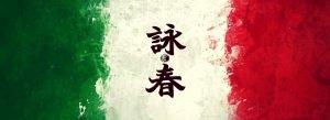 La bandiera di Wing Chun Italia, con il nostro logo nell'ideogramma del Wing Chun